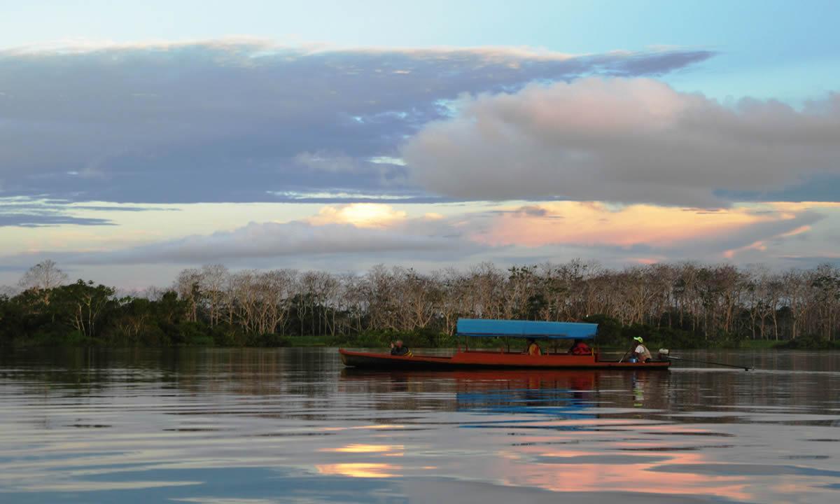 Amazonas (2)