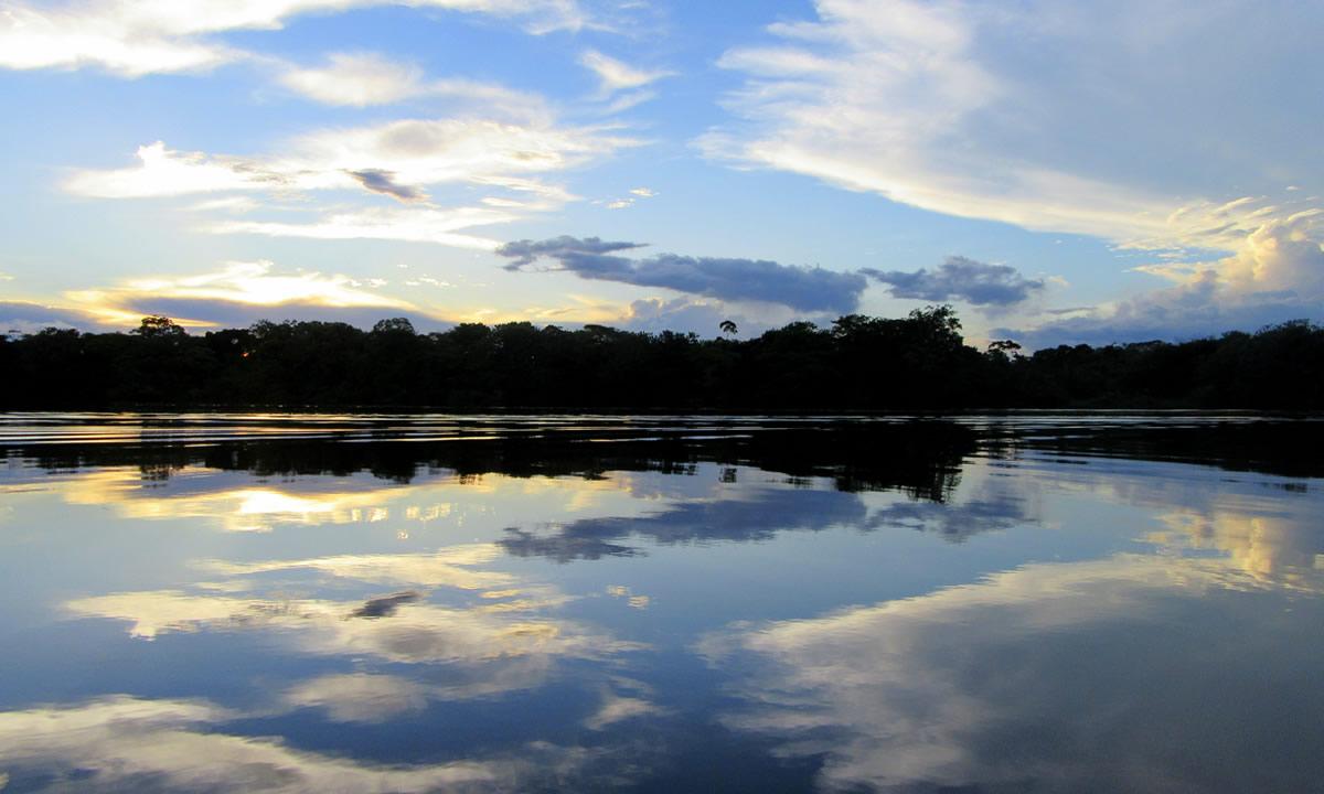 Amazonas (3)