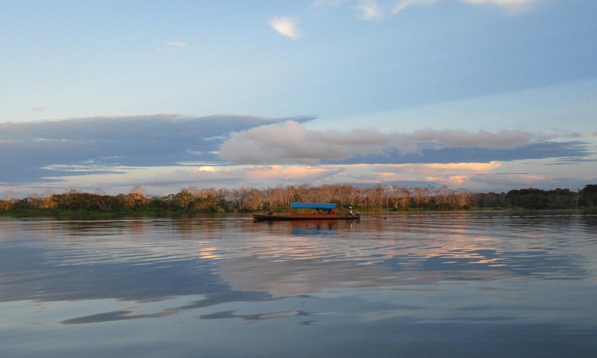 Amazonas (4)