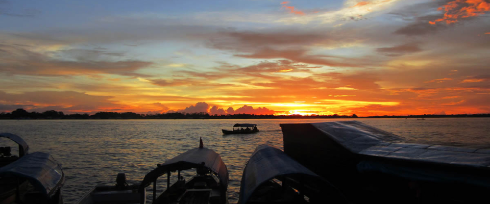 Amazonas (6)