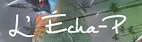 L'ECHA-P