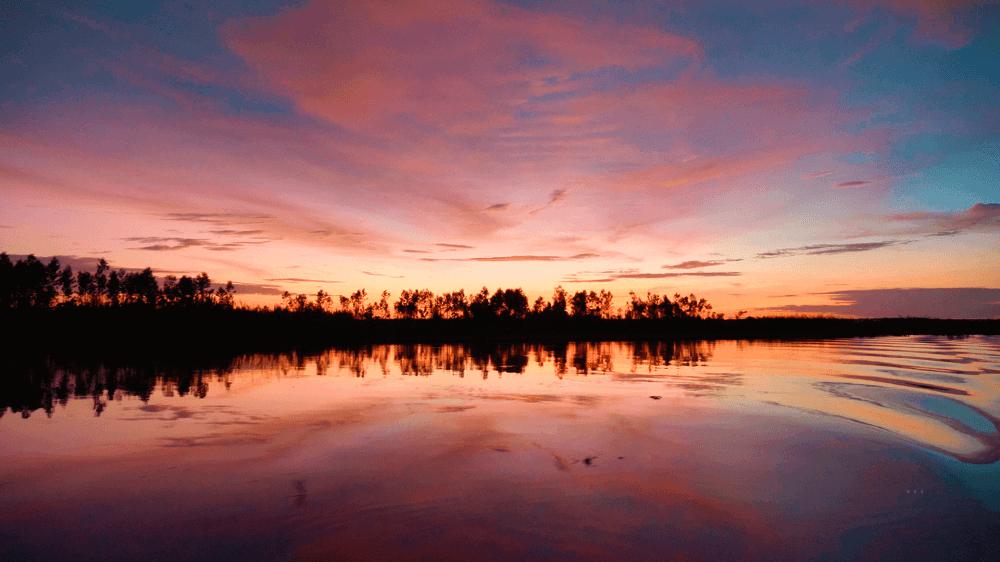 Circuit Exception - Coucher de Soleil sur l'Amazonie