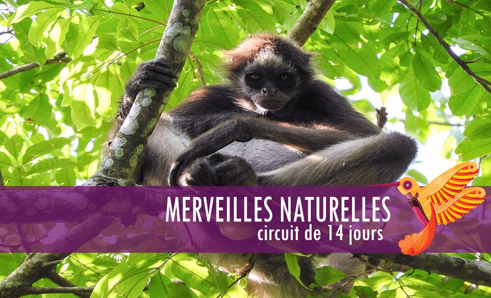 Circuit Merveilles Naturelles - Colombia Infinita, agence de voyage en Colombie