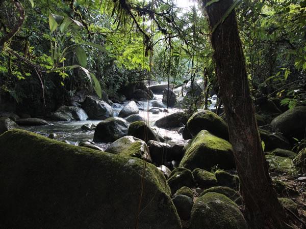 Les réserves naturelles en Colombie