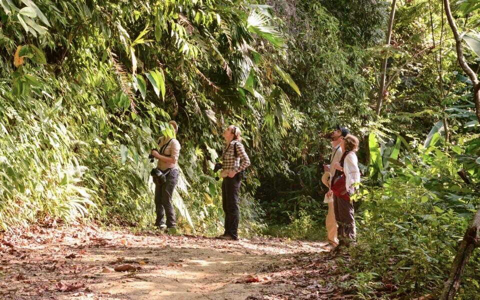 Réserve tropicale Boyaca