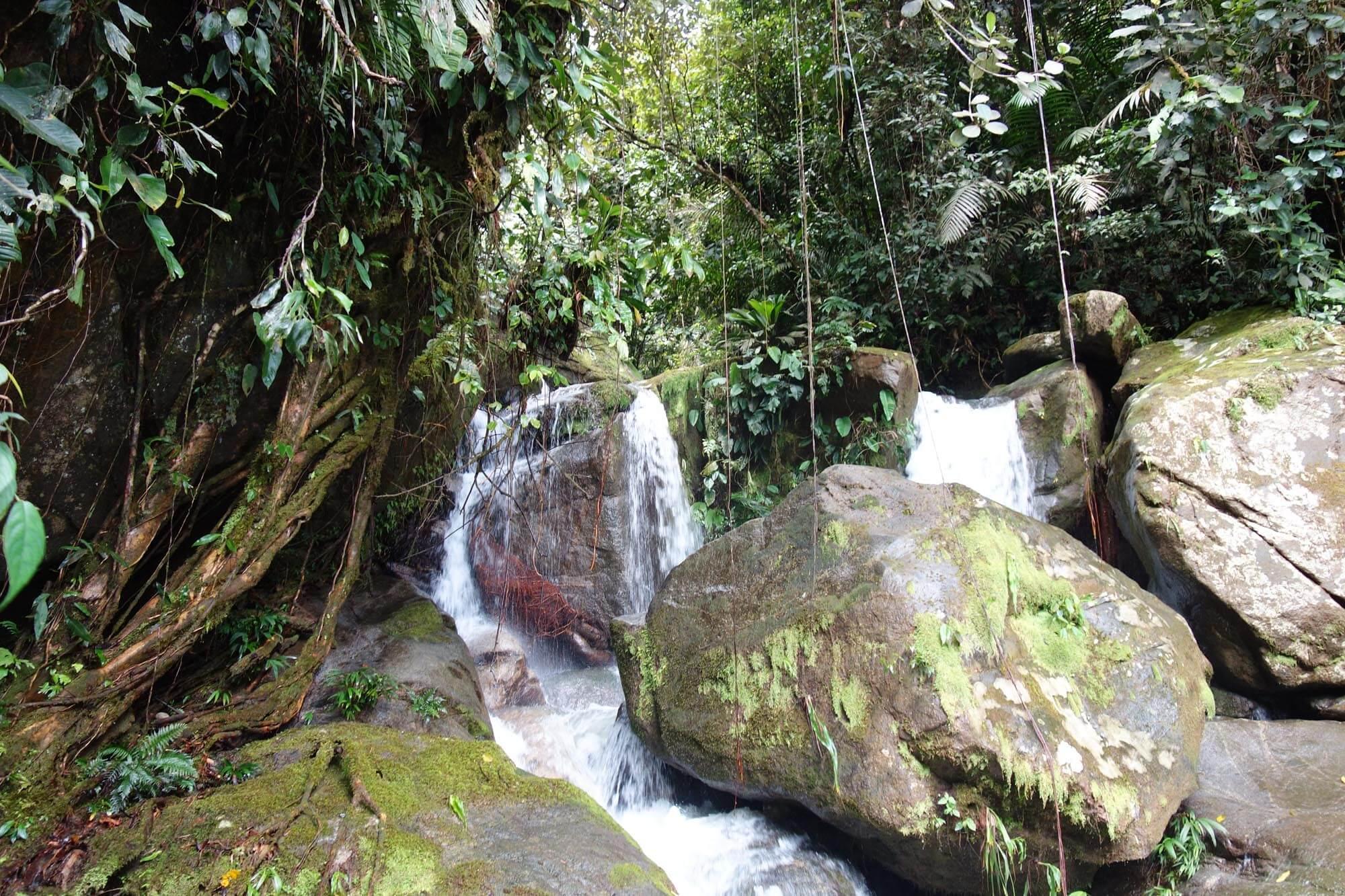 Tour Guatapé et Nature 4