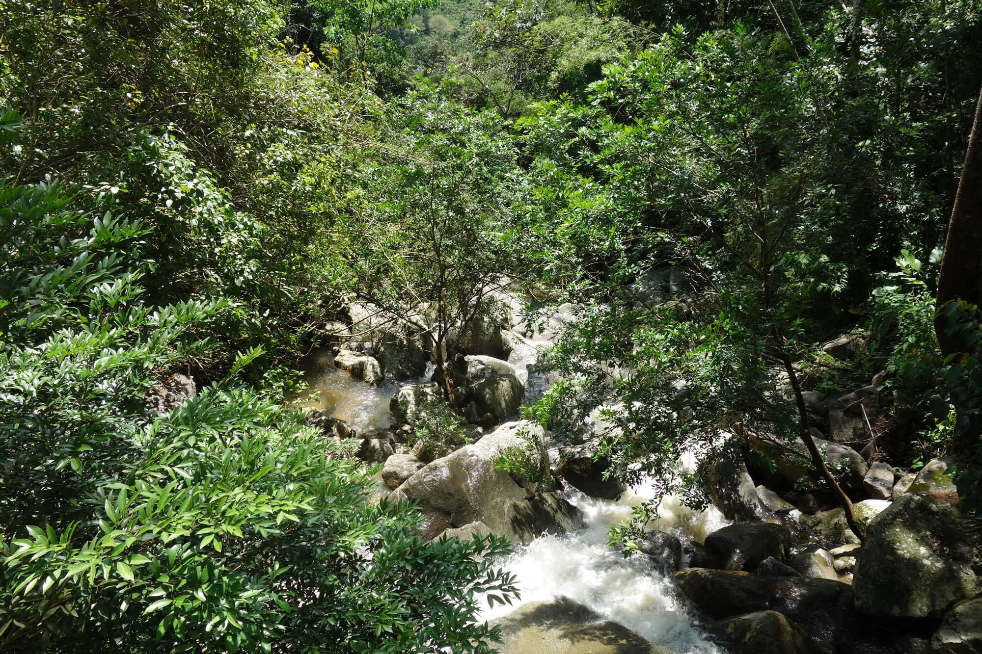 Tour Guatapé et Nature 6