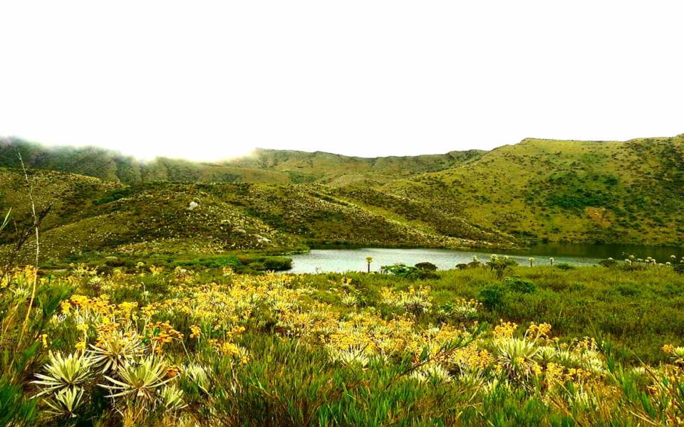 Tour Parc National Chingaza 4