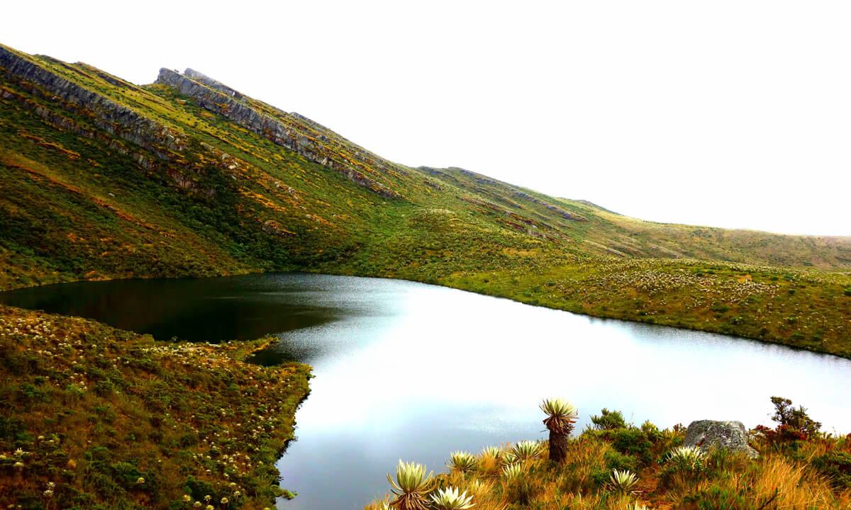 Tour Parc National Chingaza 5