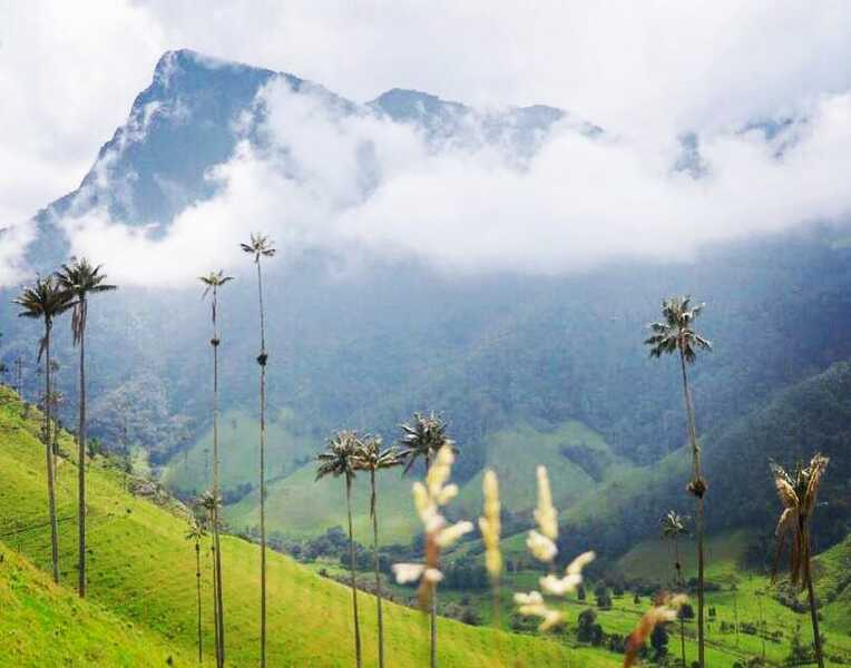 Ecotourisme et culture locale