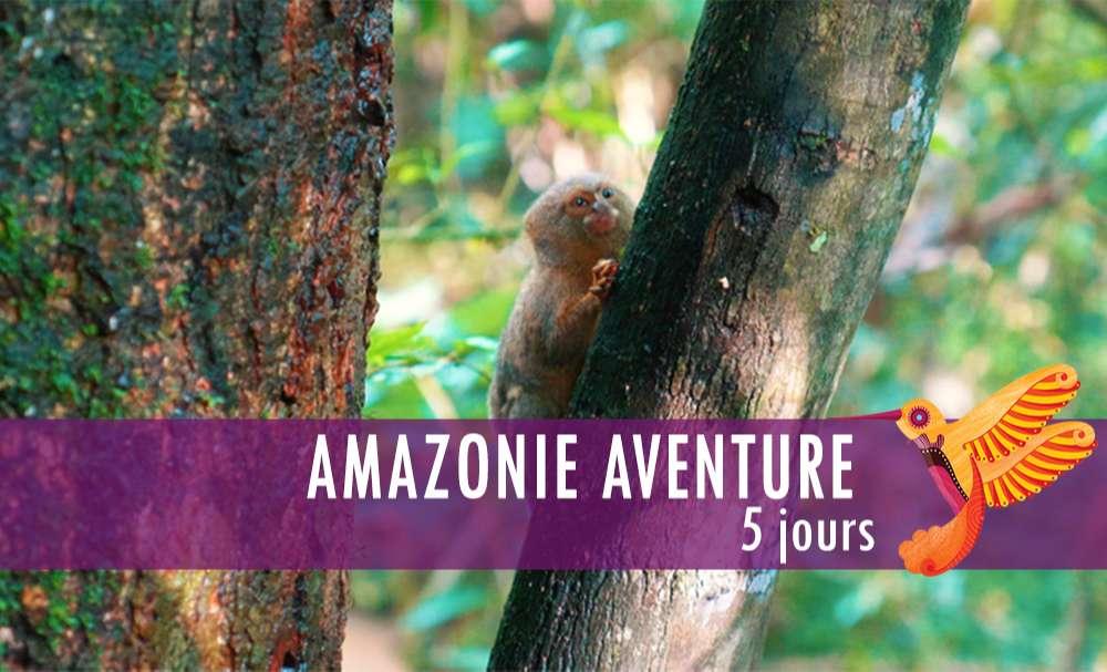 Vignette - Amazonie aventure