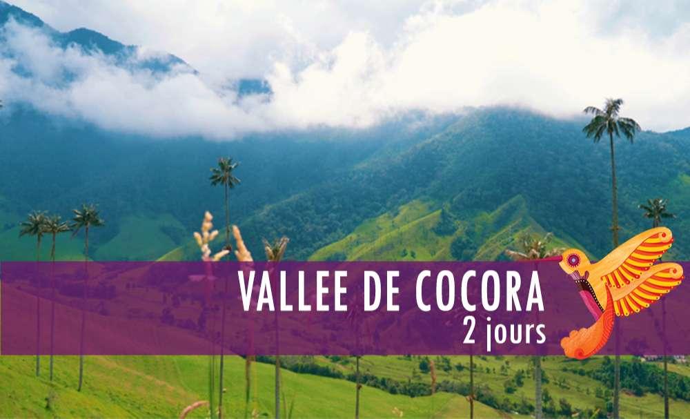Vignette - Vallee Cocora
